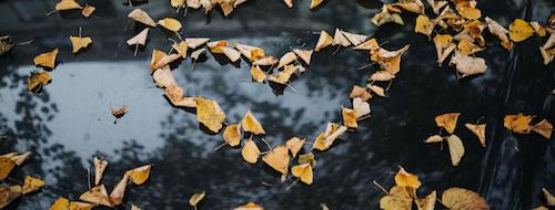 changement de saison automne